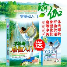 正版瑜伽dvd 初级教学入门教程光盘高清瘦身瑜珈健身操视频12碟片