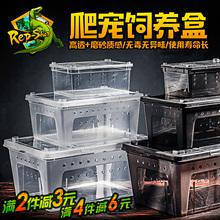 爬虫饲养盒爬宠饲养箱蜘蛛角蛙守宫盒蜥蜴宠物蛇蝎子昆虫乌龟缸