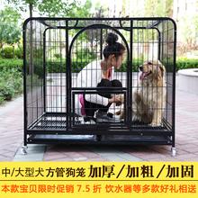 萨摩耶泰迪宠物笼子 拉布拉多狗笼L 加粗金毛狗笼子中型犬大型犬