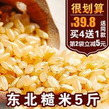 大智然糙米东北大米新米5斤五谷杂粮全胚芽发芽粗粮农家自产2.5Kg