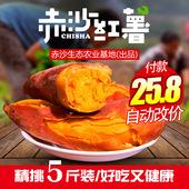 赤沙红心红薯新鲜农家现挖地瓜沙地富硒六鳌红蜜薯烤山芋小番薯甜