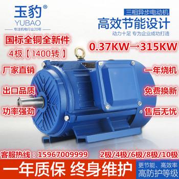 厂家直销YE2-4极0.37-315KW三相异步电动机国标电机全铜380V马达