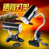 可调温 灯泡太阳灯 陶瓷灯架 爬虫用品乌龟晒背灯夹uvb补钙加热灯