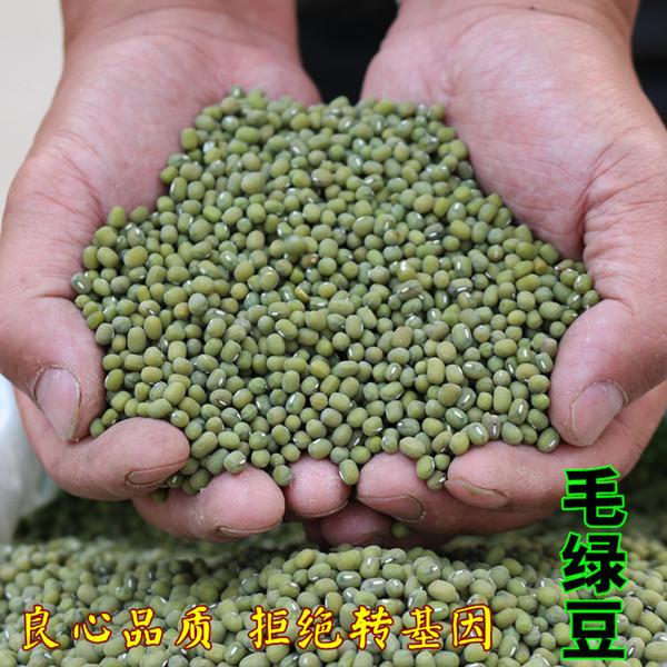 纯天然农绿豆毛绿豆小粒毛绿豆500g=1斤