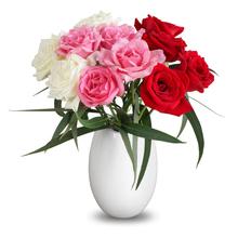 【鲜果岛】多色玫瑰花花束鲜花速递康乃馨百合花空运到家MG