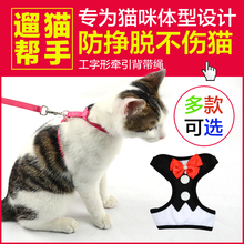 猫咪牵引绳防挣脱猫咪专用遛猫绳猫链子牵引绳溜猫绳猫绳子猫牵引