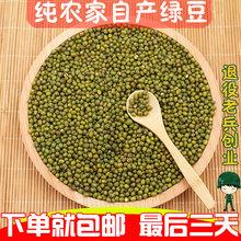 包邮 绿豆农家新绿小豆毛绿豆笨绿豆250g生绿豆发芽绿豆粥五谷杂粮