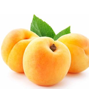 正宗嘉善新鲜黄桃 新鲜水果3斤装包邮批发 锦绣黄桃大桃胜水蜜桃