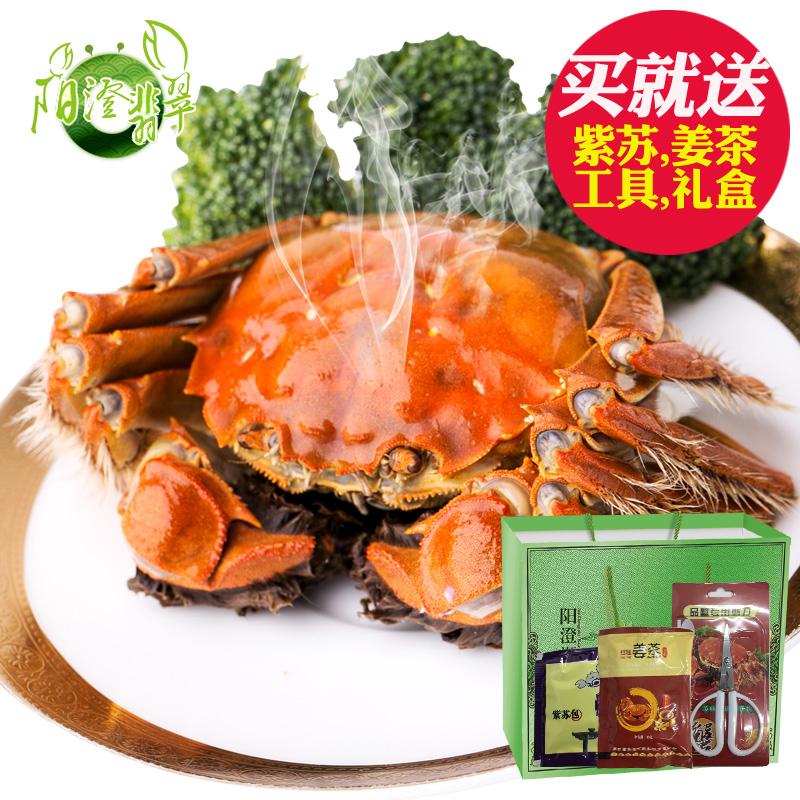 大闸蟹鲜活两公蟹螃蟹翡翠只装全公蟹
