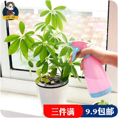 浇花小喷壶园艺多肉植物浇水碰水壶家用手压式喷雾瓶塑料洒水壶
