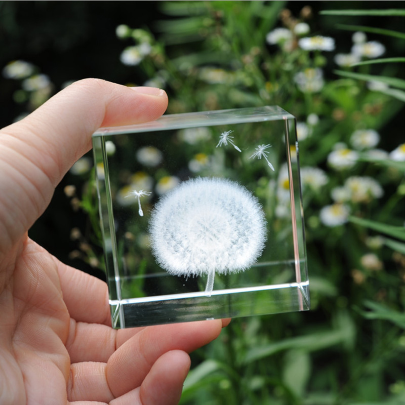 水晶蒲公英标本七夕情人节送女友闺蜜实用创意生日礼物
