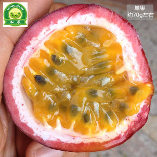 百香果现摘发货广西新鲜9斤装包邮新鲜热带水果西番莲鸡蛋果