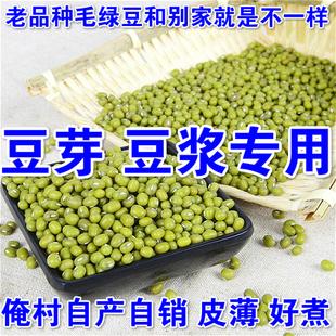 绿豆绿小豆毛笨绿豆子农家自产有机2015新小绿豆五谷杂粮芽豆豆浆