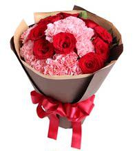 母亲节鲜花生日鲜花女人节鲜花13枝粉康乃馨9枝红玫瑰同城鲜花