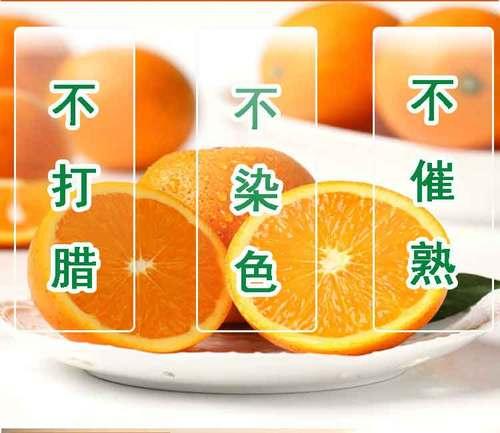 新鲜水果预售包邮超甜多汁当季现摘现发黔阳冰糖橙非赣南脐橙子