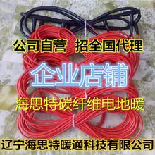 安装 海思特经济型养殖场 电地暖碳纤维发热电缆电地暖线24K家用