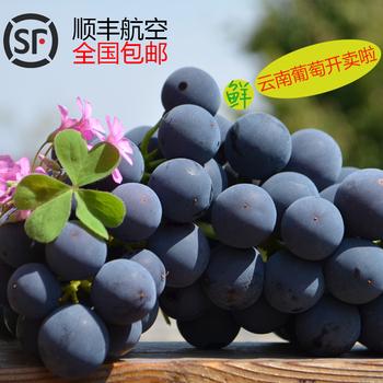 云南夏黑葡萄 红提新鲜水果提子