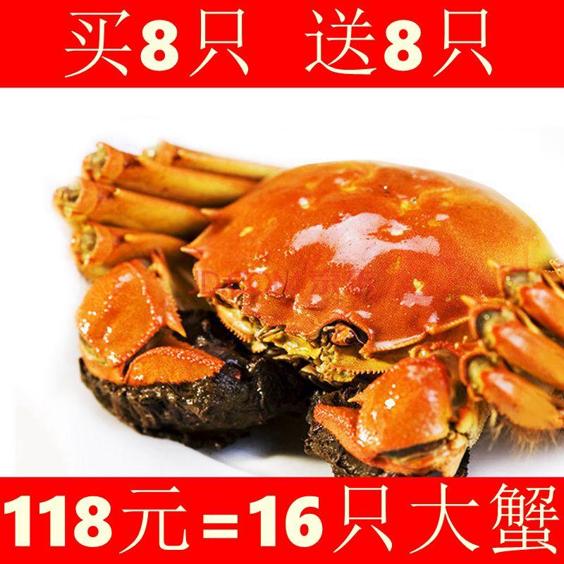 【买就送8只】阳澄湖大闸蟹现货鲜活螃蟹公3.0-3.4两 母2.0-2.4两