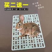 宠物兔子脚垫防啃咬垫脚垫荷兰猪兔笼用品垫子笼子垫板塑料垫底板