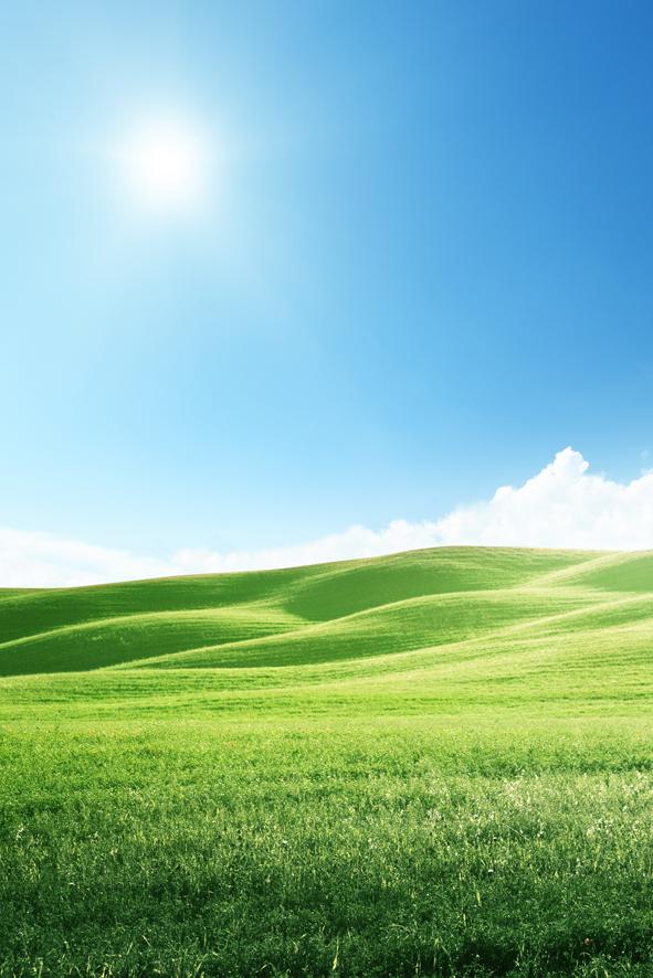 蓝天白云阳光草地海报竖幅绿色护眼风景画墙贴客厅卧室装饰画定制