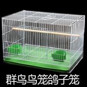 全国包邮促销金属鸟笼八哥鹩哥鸽子虎皮鹦鹉相思鸟笼通用鸟笼群笼