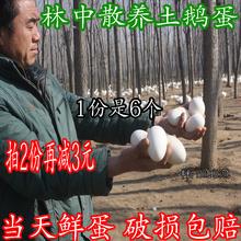 新鲜鹅蛋正宗处子纯天然原生态散养当天农家土鹅蛋孕妇去胎毒包邮