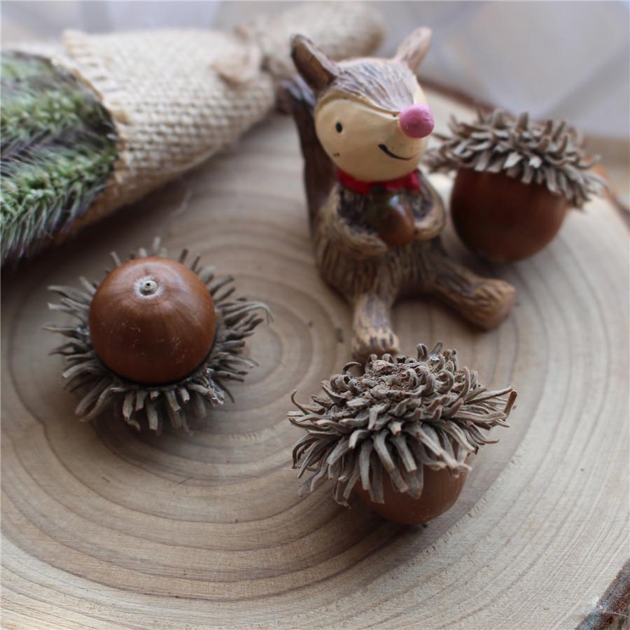 森林系diy手作配件纯天然真的橡果橡子干果自然浆果很
