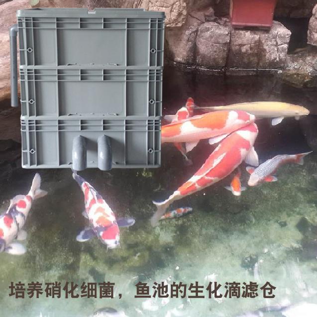 z款diy過濾箱 周轉箱觀賞魚錦鯉烏龜過濾器魚缸魚池上置滴流過濾圖片