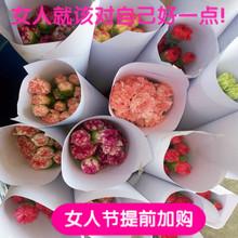 云南鲜花同城速递三八节预定热卖单品基地康乃馨2扎中通包邮